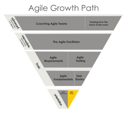 Primer - Agile Growth Path Just Plain Agile