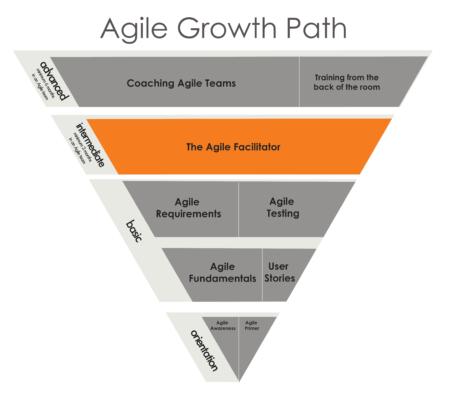The Agile Facilitator - Agile Growth Path Just Plain Agile