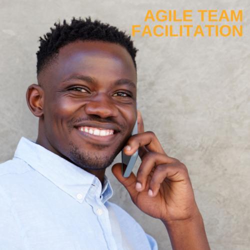 Agile Team Facilitation teaching