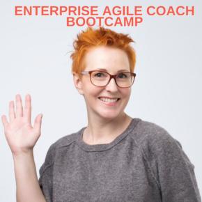 Enterprise Agile Coach Bootcamp teaching
